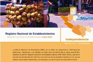 Portadita Bolet Preliminar (RNE) Independencia web